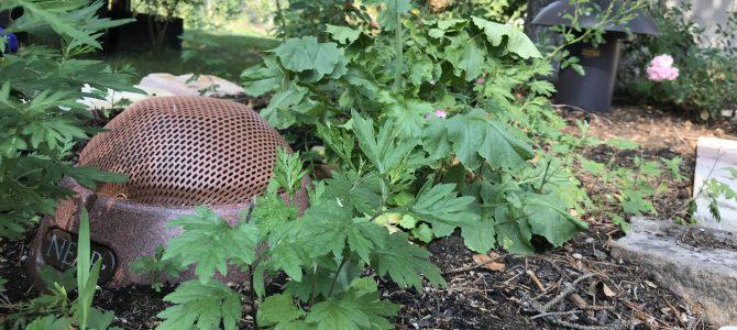 NEAR Omnidirektionale Gartenbeschallung